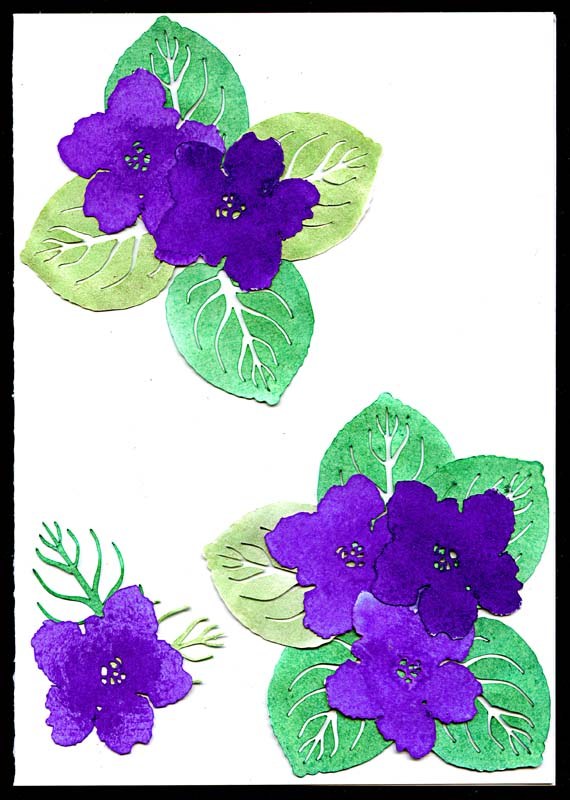 African Flowers Drawing